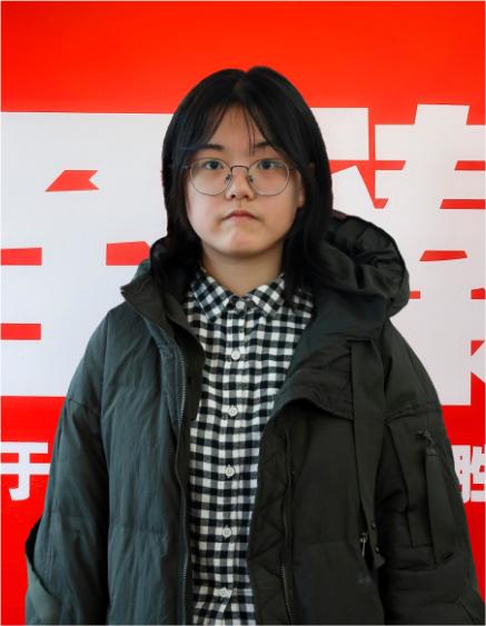 刘妍(2017)